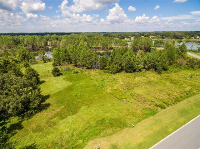 428 Long And Winding Road, Groveland, FL 34737 (MLS #O5716005) :: The Duncan Duo Team