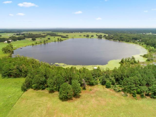 Lot 9 County Road 439 Road, Umatilla, FL 32784 (MLS #O5719590) :: RE/MAX Realtec Group