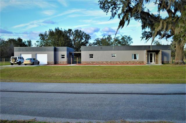 6081 Ocilla Loop, Clermont, FL 34714 (MLS #O5751340) :: Griffin Group