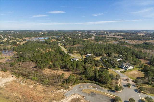 407 Long And Winding Road, Groveland, FL 34737 (MLS #O5768842) :: Rabell Realty Group