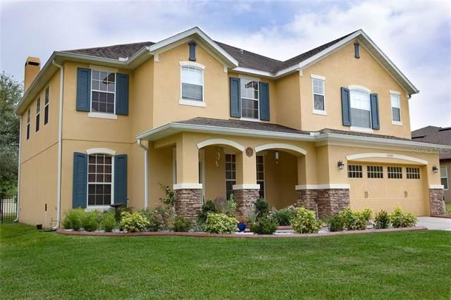 30420 Gidran Terrace, Mount Dora, FL 32757 (MLS #O5781779) :: Team 54