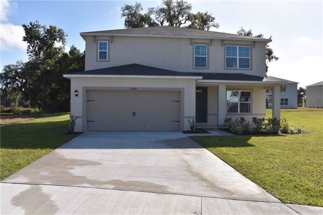 10608 Bronze Leaf Court, Leesburg, FL 34788 (MLS #O5792700) :: 54 Realty