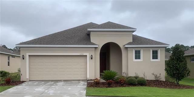 1201 Merion Drive, Mount Dora, FL 32757 (MLS #O5825217) :: CENTURY 21 OneBlue