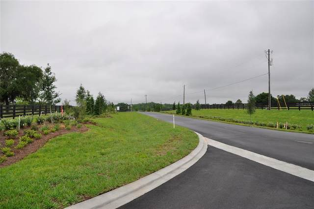 Oak Pointe Preserve Lot 1, Clermont, FL 34711 (MLS #O5841989) :: The Heidi Schrock Team