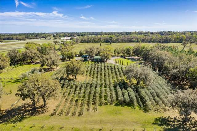 9501 W Highway 326, Ocala, FL 34482 (MLS #O5848782) :: Lockhart & Walseth Team, Realtors