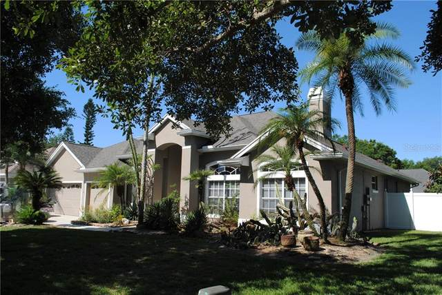 Address Not Published, Belle Isle, FL 32812 (MLS #O5858998) :: The Duncan Duo Team
