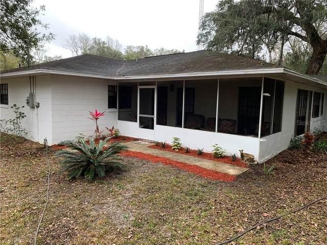 6415 SE Highway 42, Summerfield, FL 34491 (MLS #O5879937) :: Everlane Realty