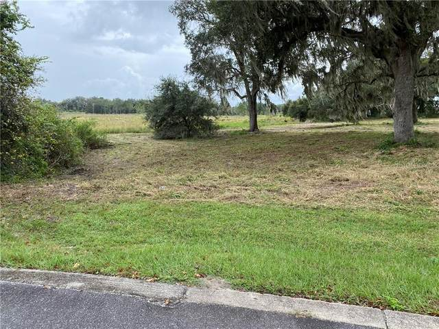 447 Long And Winding Road, Groveland, FL 34737 (MLS #O5883008) :: Premier Home Experts