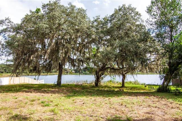 Bluff Lake Road, Mascotte, FL 34753 (MLS #O5893385) :: Premier Home Experts