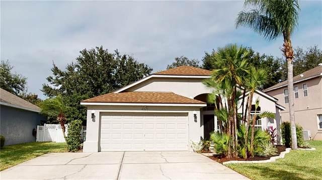 463 Fern Meadow Loop, Ocoee, FL 34761 (MLS #O5907557) :: Griffin Group