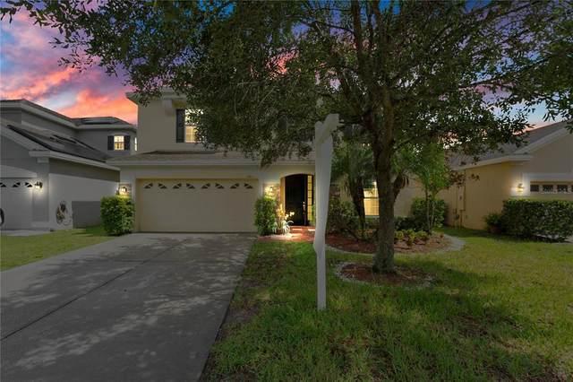 10917 Arbor View Boulevard, Orlando, FL 32825 (MLS #O5909218) :: Zarghami Group
