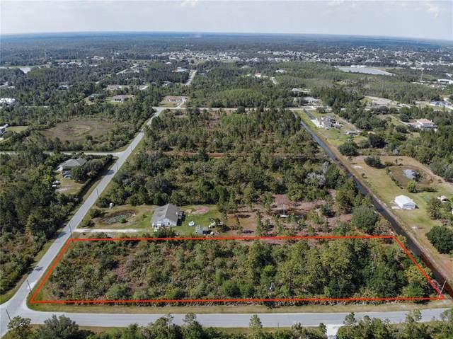Caesar Avenue, Orlando, FL 32833 (MLS #O5939431) :: Rabell Realty Group