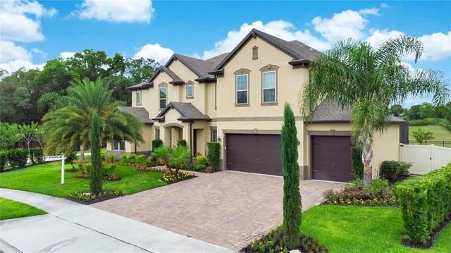 3225 Pinenut Drive, Apopka, FL 32712 (MLS #O5943319) :: Premium Properties Real Estate Services