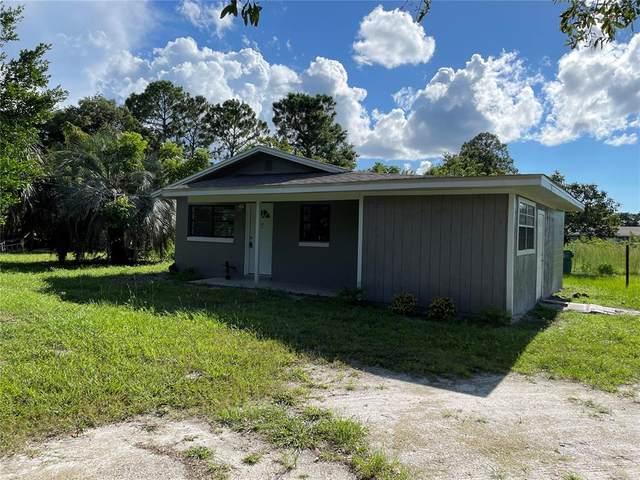 203 Lake George Street, Pierson, FL 32180 (MLS #O5960744) :: Zarghami Group