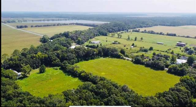 5115 Kelly Road, Hastings, FL 32145 (MLS #O5962251) :: Vacasa Real Estate
