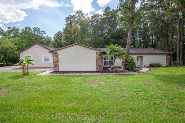 19504 Hiawatha Road, Odessa, FL 33556 (MLS #O5967269) :: Vacasa Real Estate
