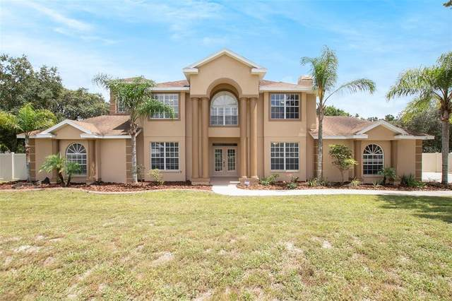 11302 Hoot Owl Court, Riverview, FL 33569 (MLS #O5968139) :: The Paxton Group