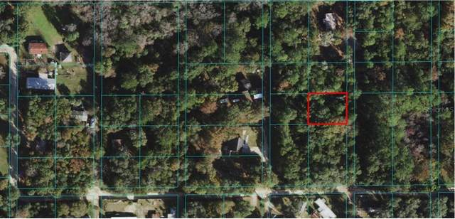 NE 169 Court, Silver Springs, FL 34488 (MLS #O5970682) :: Zarghami Group