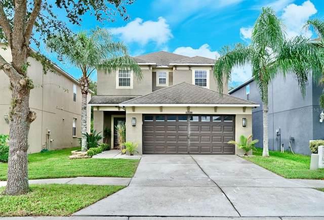 15509 Long Cypress Drive, Ruskin, FL 33573 (MLS #O5973617) :: Realty Executives