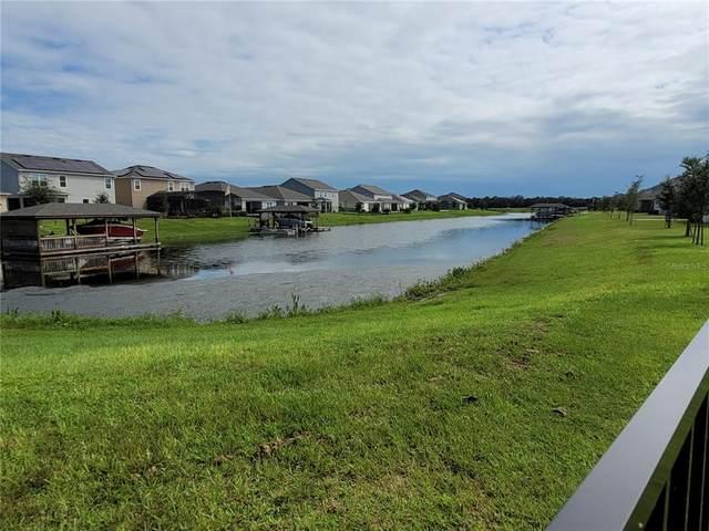 3175 Wauseon Drive, Saint Cloud, FL 34772 (MLS #O5973917) :: Keller Williams Realty Select