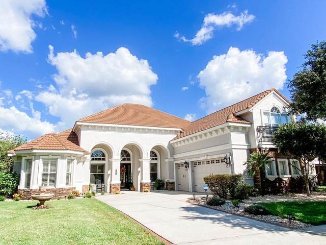8360 Dunham Station Drive, Tampa, FL 33647 (MLS #O5978865) :: McConnell and Associates