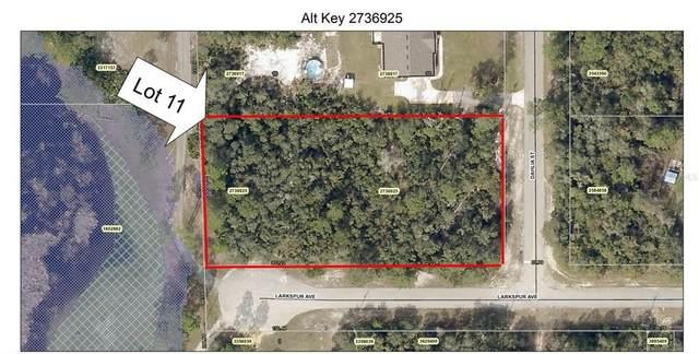 Lot 11 Dahlia Street, Eustis, FL 32736 (MLS #O5981594) :: The Light Team