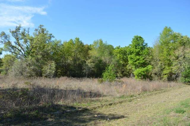 Address Not Published, Bronson, FL 32621 (MLS #OM601653) :: Pristine Properties