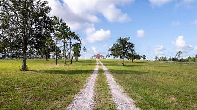 24260 NW 27TH Street, Morriston, FL 32668 (MLS #OM605536) :: Key Classic Realty