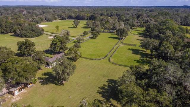 12080 NW 100TH Street, Ocala, FL 34482 (MLS #OM611300) :: Delta Realty, Int'l.