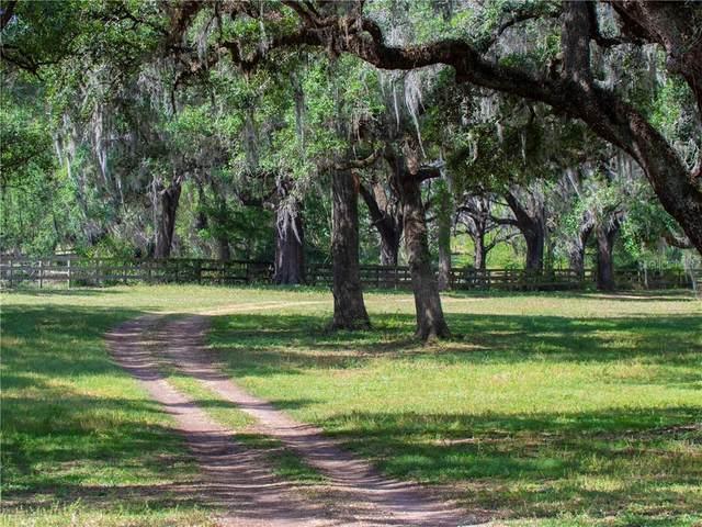 187TH Lane, Reddick, FL 32686 (MLS #OM618299) :: Sarasota Home Specialists