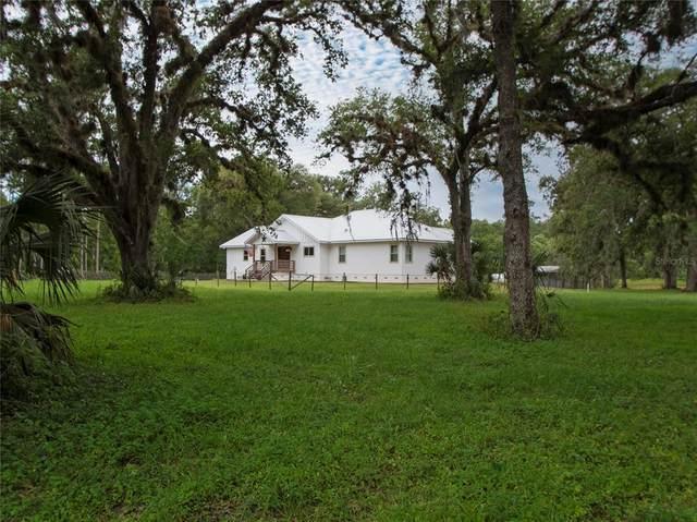 10779 NE Hwy 314, Silver Springs, FL 34488 (MLS #OM620628) :: Armel Real Estate