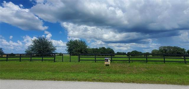Sw 95Th  St, Ocala, FL 34476 (MLS #OM622327) :: The Paxton Group