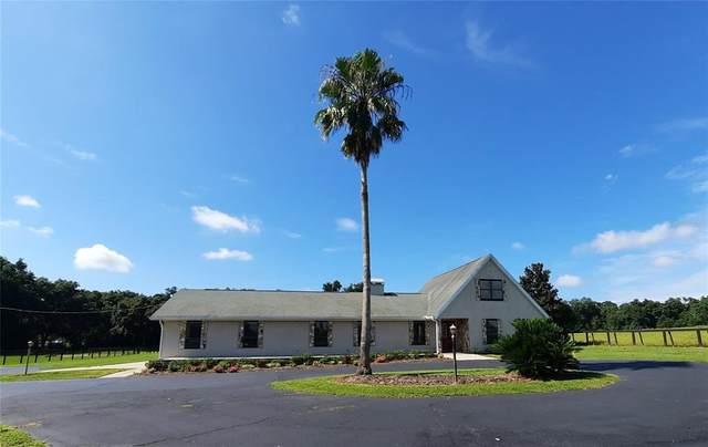 1960 SE 150TH Street, Summerfield, FL 34491 (MLS #OM624514) :: Everlane Realty