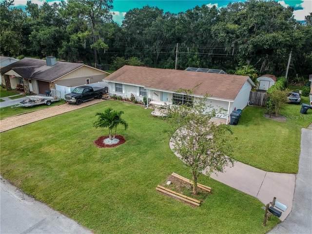 2962 Delrose Drive N, Lakeland, FL 33805 (MLS #P4902393) :: Burwell Real Estate