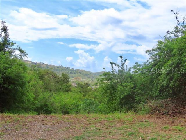 CALLE 3 LOTE 5 Urb. Hacienda San Jose, PONCE, PR 00717 (MLS #PR9088715) :: The Duncan Duo Team
