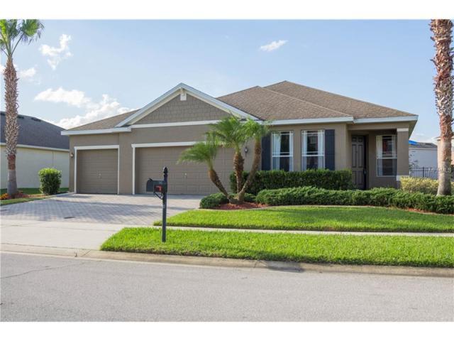 3827 Spirited Circle, Saint Cloud, FL 34772 (MLS #S4853608) :: Godwin Realty Group