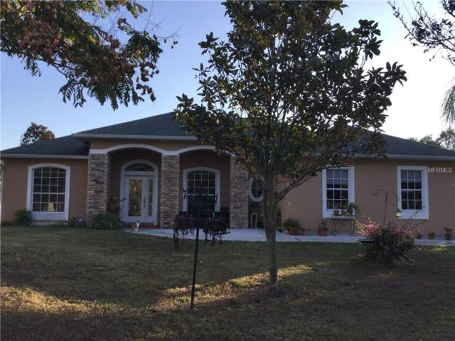 4690 Boggy Creek Road, Kissimmee, FL 34744 (MLS #S4855143) :: Griffin Group