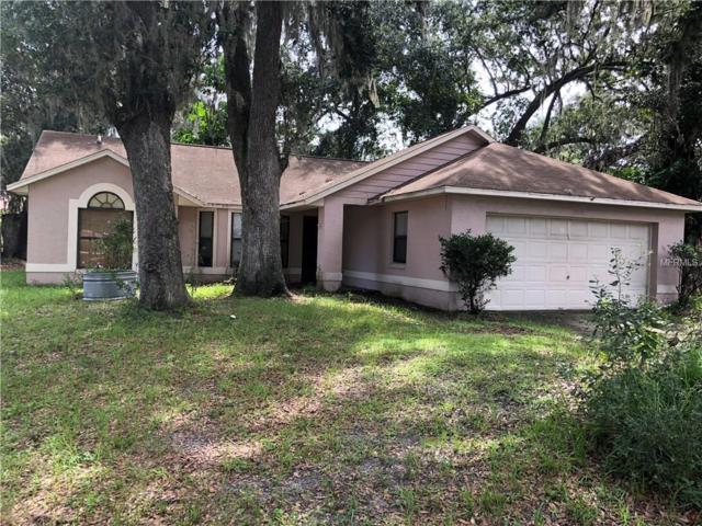 2929 Mill Run Boulevard, Kissimmee, FL 34744 (MLS #S5004667) :: Premium Properties Real Estate Services