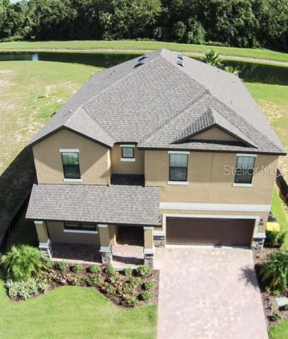 1236 Grand Traverse Parkway, Reunion, FL 34747 (MLS #S5011451) :: The Duncan Duo Team