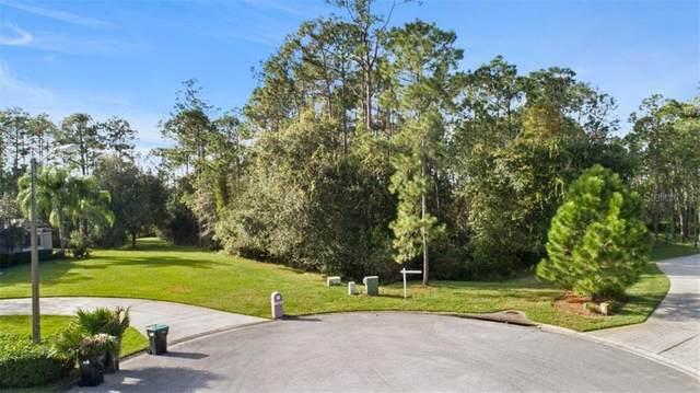 Orlando, FL 32832 :: Bob Paulson with Vylla Home