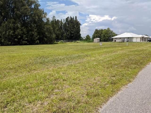 300 Maple Lane, Sebring, FL 33876 (MLS #S5053883) :: Team Turner