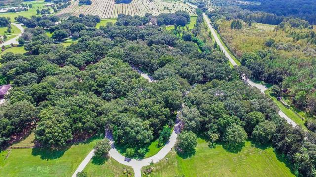 0 Oak Canopy Junction Lot 101, Thonotosassa, FL 33592 (MLS #T2778241) :: Griffin Group