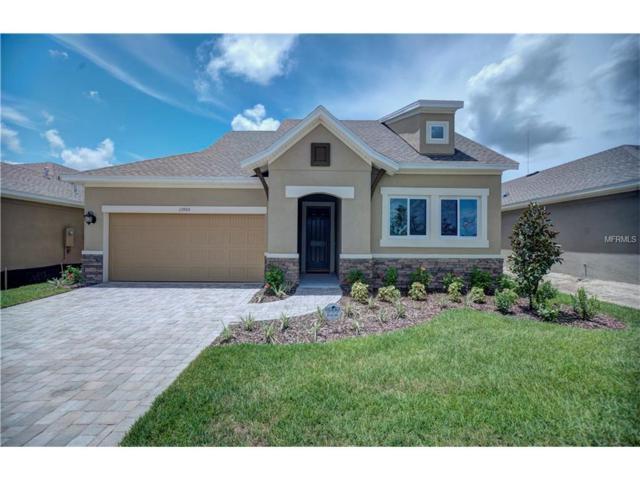 13905 Goldfinch Glade Lane, Lithia, FL 33547 (MLS #T2807669) :: The Duncan Duo & Associates