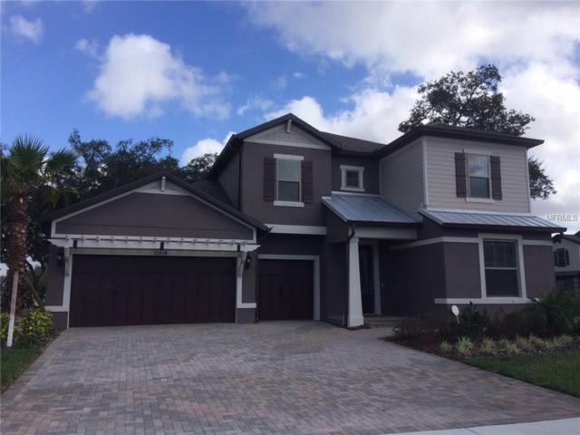 10418 Scarlet Chase Drive NE, Riverview, FL 33598 (MLS #T2808584) :: The Duncan Duo & Associates