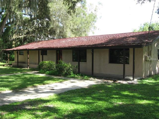 33580 Tammy Lane, Wesley Chapel, FL 33543 (MLS #T2837775) :: Delgado Home Team at Keller Williams
