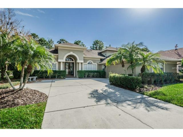 10562 Greencrest Drive, Tampa, FL 33626 (MLS #T2844300) :: The Duncan Duo & Associates