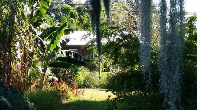 11721 John Robbins Road, Riverview, FL 33578 (MLS #T2847391) :: The Duncan Duo Team
