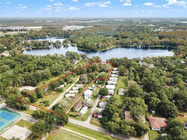 14402 Bella Bella Lane, Odessa, FL 33556 (MLS #T2870170) :: Alpha Equity Team