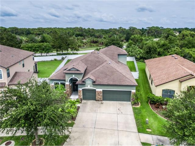 8606 White Poplar Drive, Riverview, FL 33578 (MLS #T2889019) :: The Duncan Duo & Associates