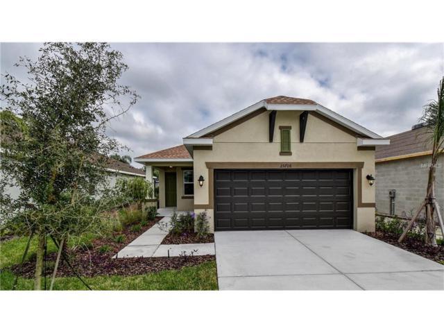 25708 Boysen Berry Avenue, Englewood, FL 34223 (MLS #T2894418) :: Medway Realty